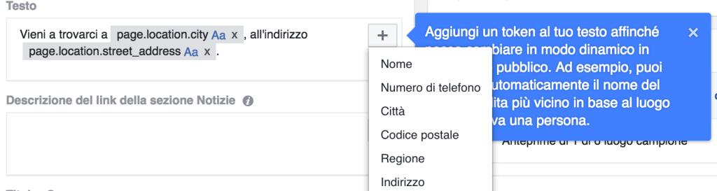 campi dinamici annunci local facebook