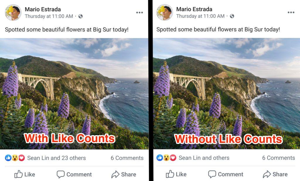 rimozione like facebook