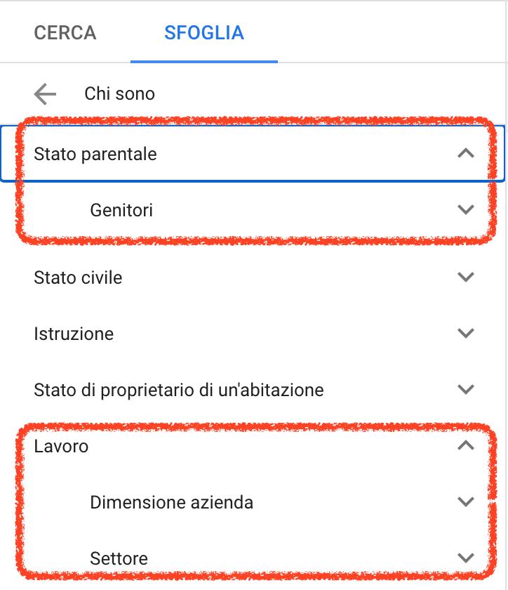 segmenti di pubblico google ads